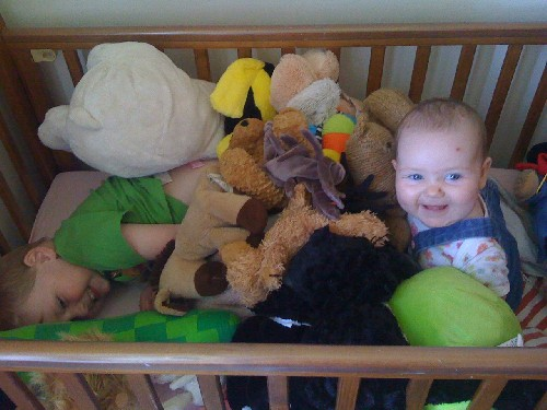 Mylo Chucking Everything In The Cot